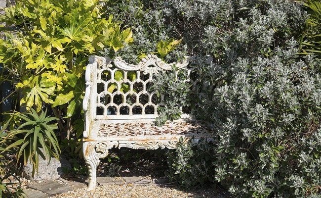 Overgrown wrought iron bench